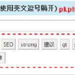 WordPress SEO 中文插件