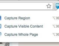 Chrome 截图插件:Screen Capture