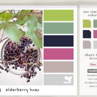 获取来自大自然的颜色:Design Seeds