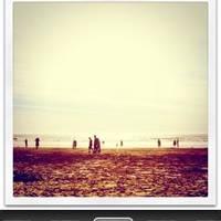 iPhone 图片分享应用 Instagram 和其 WordPress 插件