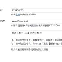 基于有道翻译的微信中英文翻译插件