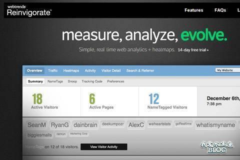reinvigorate online website analysis analytics heatmaps