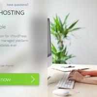 Bluehost 推出针对 WordPress 优化的主机服务