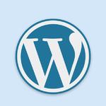WordPress 教程:使用 <code>wp_set_post_terms</code> 给文章设置分类和标签信息时参数的注意事项