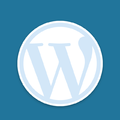 WordPress JSON 处理相关函数大全